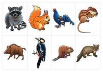 Картинки с животными леса. Карточки.
