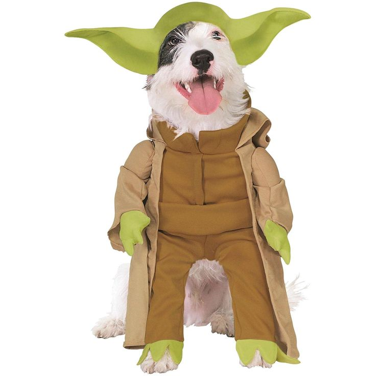 Star Wars Yoda Dog Small