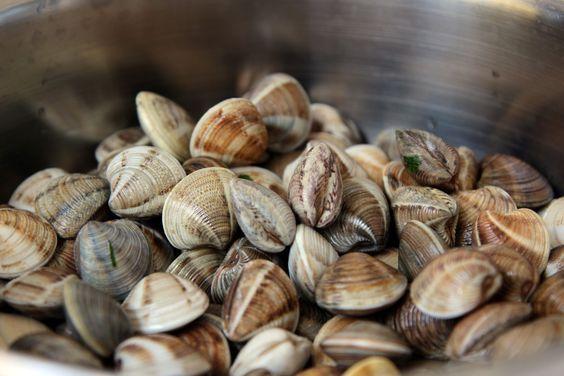 Zutaten: 500 gVenusmuscheln 250 ml Weißwein trocken 1 Bund Petersilie 1 Zwiebel 2 Knoblauchzehen 3 EL Olivenöl 2 EL Butter 1 EL Zitronensaft Pfeffer und Salz zum Abschmecken Zubereitung: Die Venusmuscheln unter fließendem Wasser gründlich waschen. Die schon geöffneten Muschelnnicht verwenden, diese sind bereits schlecht. Die gesäuberten Muscheln in einen Topf legen und mit dem …