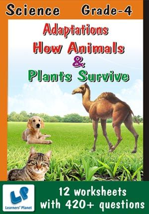 GRADE-4-SCIENCE-ADAPT-HOW-ANIMALS-PLANTS-SURVIVE-WB This workbook contains printable worksheets on Adaptations-How Animals Survive and Adaptations-How Plants Survive for Grade 4 students.  There are total 12 worksheets with 420+ questions.  Pattern of questions : Multiple Choice Questions, Fill in the blanks, True and false…    PRICE :- RS.149.00