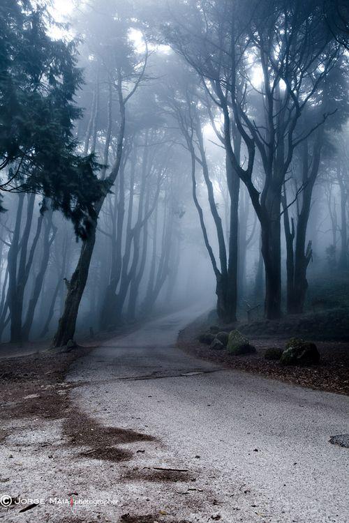 Exploring paths
