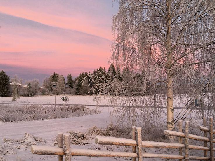 Just a seconds before the Blue Moment in Tykköö village in Jämijärvi in December of 2016. Photo: Kirsi Virtanen. No filters. Dec 2016. #jämi # jämijärvi #jami #jamijarvi #holiday #hometown #visitfinland #outdoodlife # thisisfinland #naturelovers #scandinavia #stressfreezone #kiireenyläpuolella #mindfulness #outdoors #hiking #countryside #naturelovers #familyfirst #kotikunta #enjoyinglife #goodforyoursoul #suomi100 #kunnanjohtajaseikkailee #adventuresofmayor