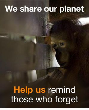 WE SHARE OUR PLANET! HELP TO REMIND THOSE WHO FORGET!