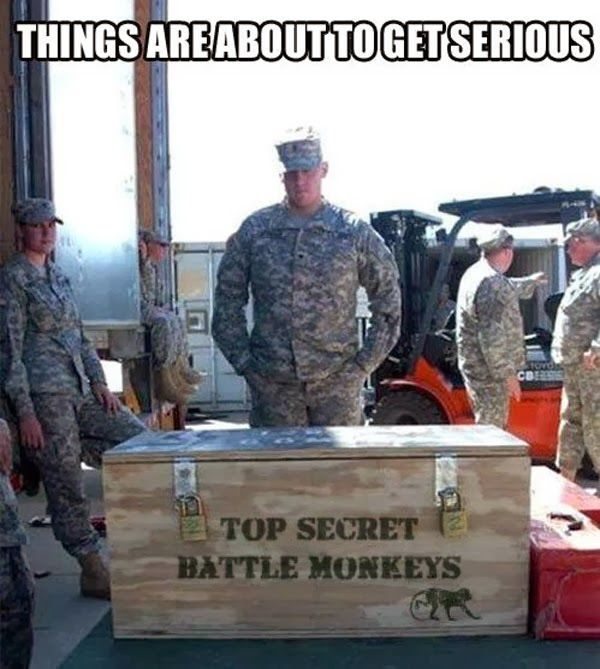 I need me one of them. Not sure what I would do with it. But I would like to hang a sign on the door that says  beware of top secret battle monkeys.