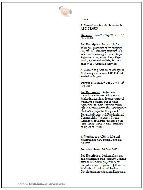 Experienced Resume Sample for College Students and Graduates(2)