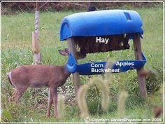Deer Feeder Plans                                                                                                                                                                                 More