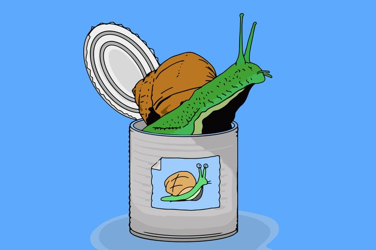 Tin is represented by a tin of snails (Sn).