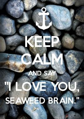 "KEEP CALM AND SAY \""I LOVE YOU, SEAWEED BRAIN.\""  :D :D :D :D PERCY JACKSON!!!"
