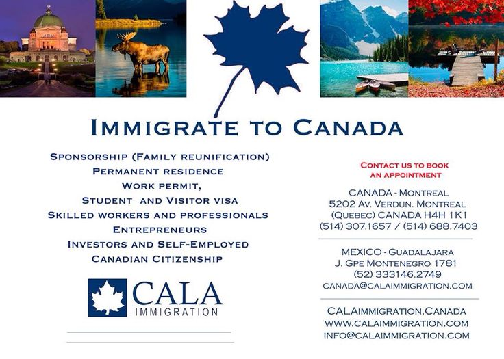Together, we can teamwork towards your goal! Contact us and start NOW! #CALAimmigration