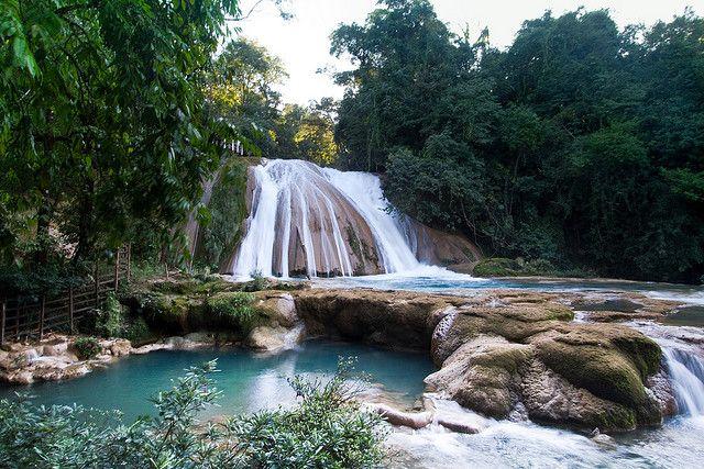 Cascadas Agua Azul (104)   Flickr - Photo Sharing!