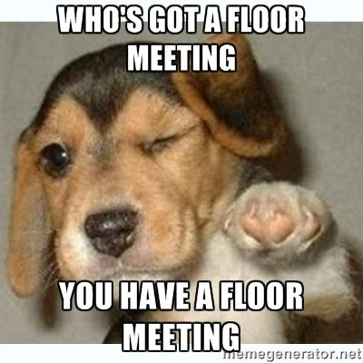 floor meeting meme - Google Search                                                                                                                                                     More