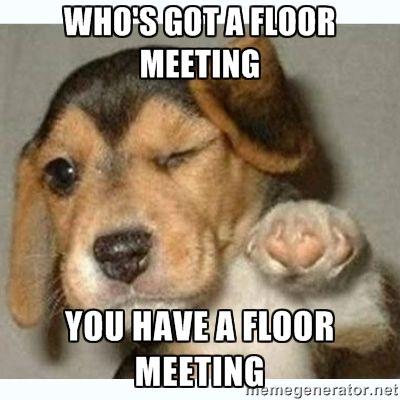 floor meeting meme - Google Search                                                                                                                                                     More