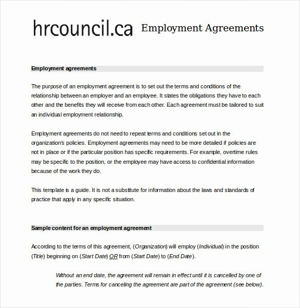 50 Free Employee Contract Templates In 2020 Contract Template