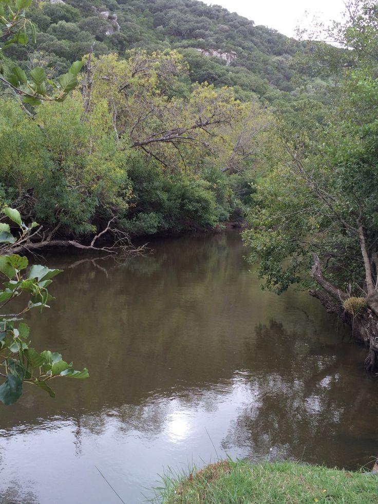 Las Lagunetas. Parque de los Alcornocales.