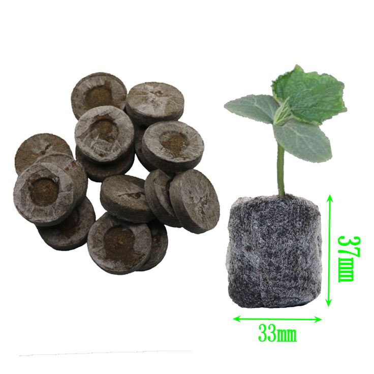Charming Cheap Seedling Tray, Buy Quality Seed Tray Directly From China Tray Seed  Suppliers: Nursery Soil Blocks, Garden Flowers Planting Soil Blocks, ...