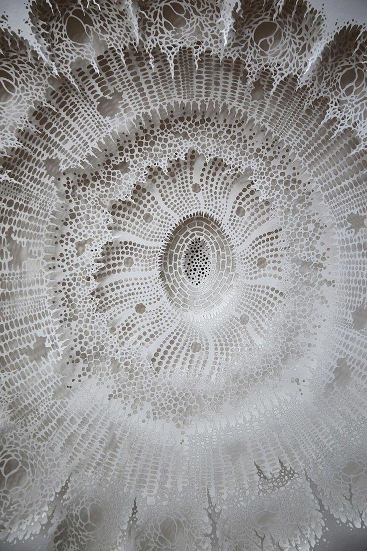 Les créations enpaper art de l'artiste américainRogan Brown qui confectionne puis découpe à la main ou au laser desmilliers de micro-organismes en pap