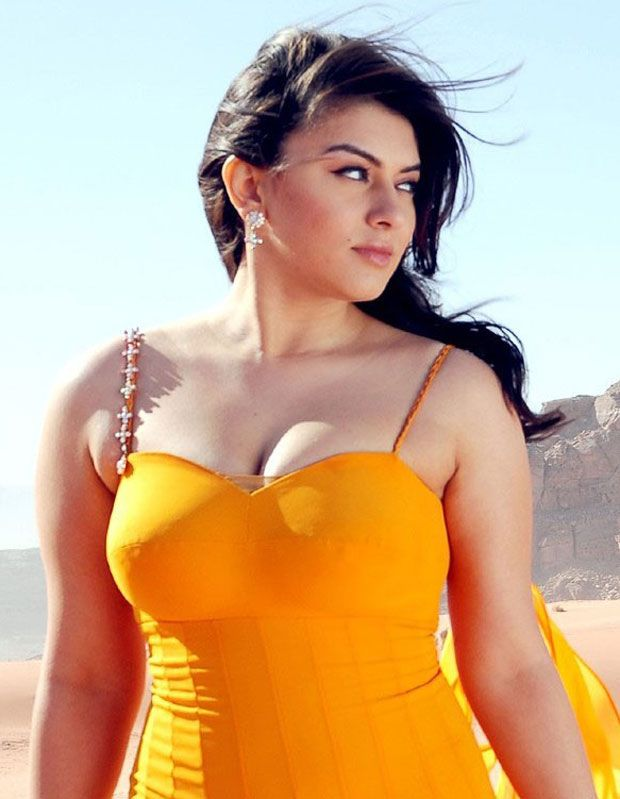 Bollywood Actress Hansika Motwani Hot Photos Wallpapers -2497