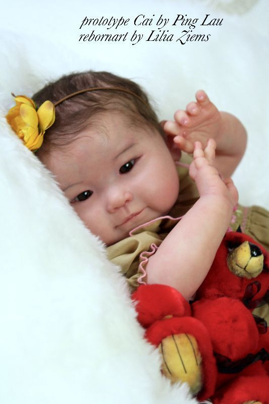 Cai by Ping Lau - Pre-Order - Online Store - City of Reborn Angels Supplier of Reborn Doll Kits and Supplies
