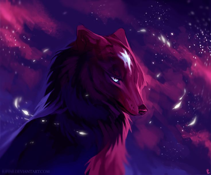 Night star male wolf quite and calm. Power:Can control stars. Loner..