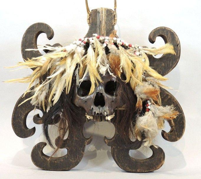 BORNEO Trophée DAYAK composé d'un crâne, bois et plumes.  Borneo.  Ht: 41; Larg: 38 cm - Estim Nation - 10/10/2015