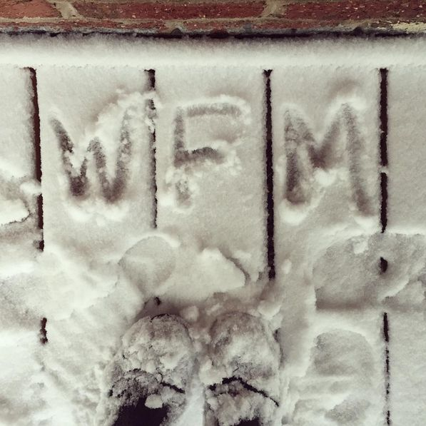 Hope everyone enjoyed the snow as much as we did!
