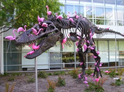 t-rex and flamingo | Stan the T-Rex vs 100 plastic flamingos] | Dinosaur funny, Funny animals ...