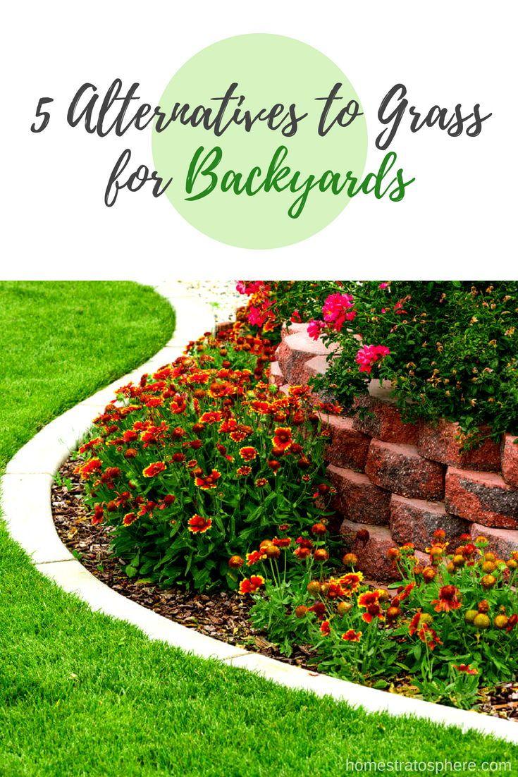 5 Top Alternatives to Grass for Backyards | Backyard ...
