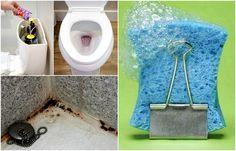15 простых советов как сделать санузел чистым и свежим