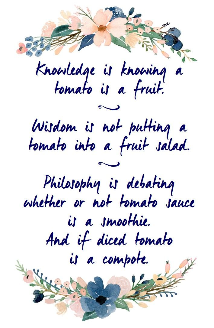 The Differences Between Knowledge Wisdom And Philosophy Humour