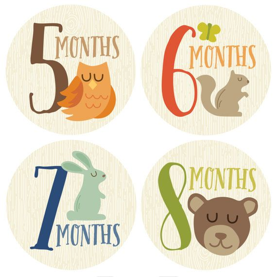 Adorable monthly stickers to mark your babys first year in photos. Simply peel the stickers off each month, place on your baby's shirt and snap
