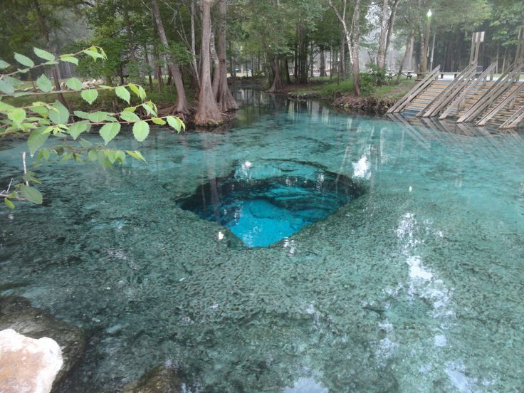 37 Best Images About Ichetucknee Springs Fl On Pinterest