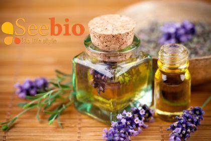 Top 10 cosmetice bio must have in kitul tau de ingrijire http://b59.net/top-10-cosmetice-bio-must-have-in-kitul-tau-de-ingrijire/