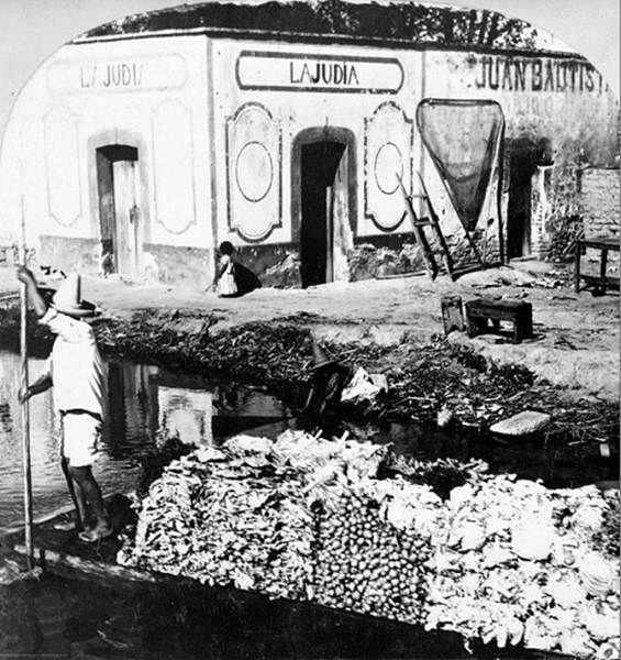 Transporte de Verduras en una trajinera en el canal de la Viga, venían desde tierra caliente Michoacán.