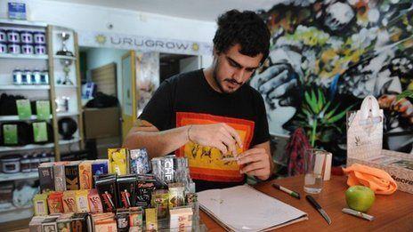 Uruguay cannabis growers' clubs: Registration begins