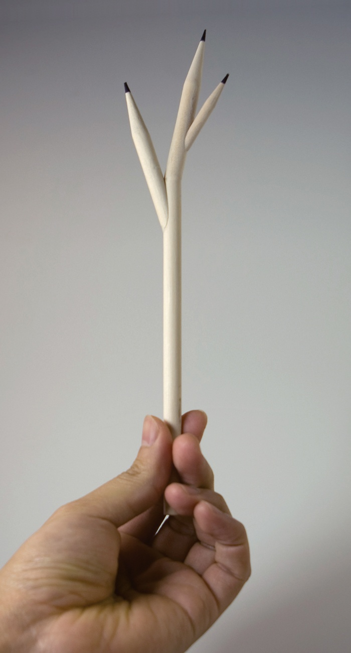 Wooden pencil: I wish having a pencil that can grow when it gets water.
