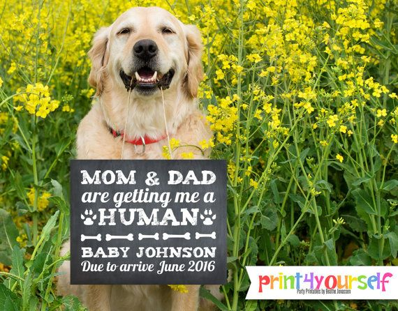 Baby Announcement Sign // 8x10 Mom and Dad are getting me a human photo prop chalkboard announcement sign // Chalkboard Baby Announcement