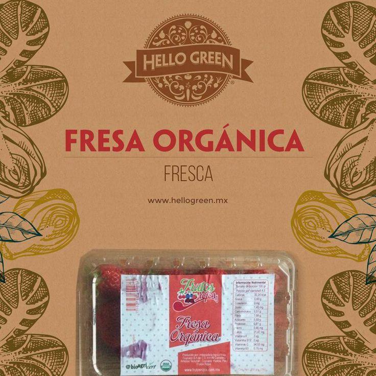 Fresa seleccionada artesanalmente por agricultores Mexicanos. ¡Contienen una gran cantidad de antioxidantes!