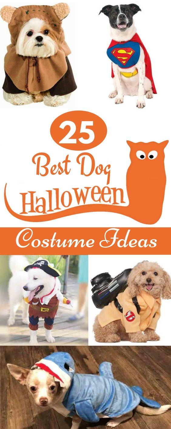 25 Best Dog Halloween Costume Ideas for 2017 | Disney Dogs