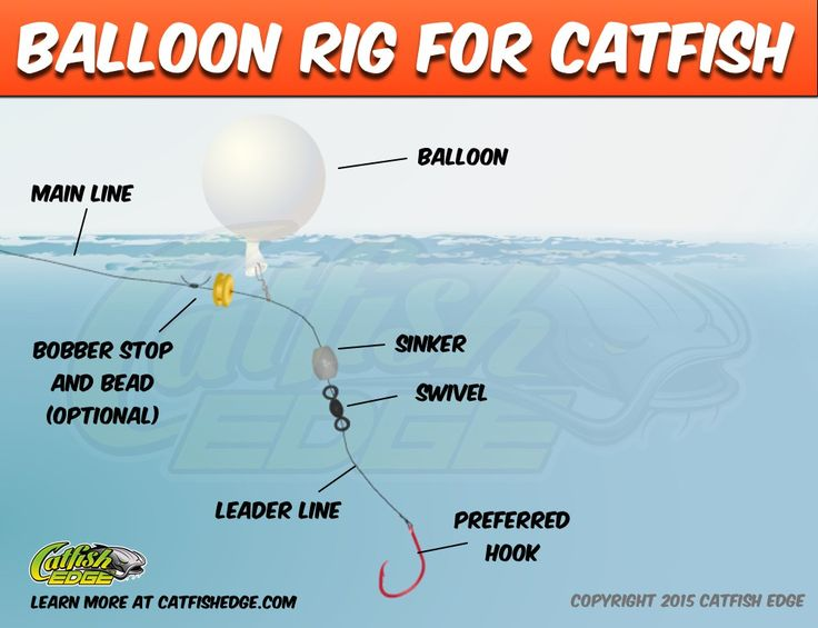 Balloon rig for catfish catfish edge catfishing tips for Catfish rigs for river fishing