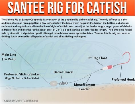 Santee Cooper Rig For Catfish: A Catfishing Essential - Adding a small float can often make a BIG difference when it comes to catching catfish. Learn more about how to use this catfish rig to catch more catfish!