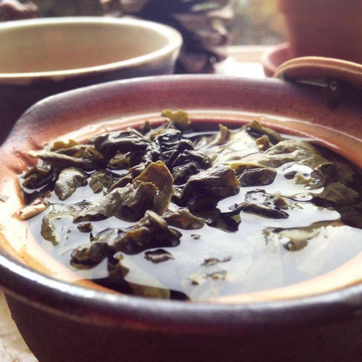 #teatime #wulong #teaaddict #tealover #klubkocajuje #relax Sauna, oběd, čaj, peřina, kniha s večer Adélky koncert v Nepřítomnosti!🌿🕊☕️