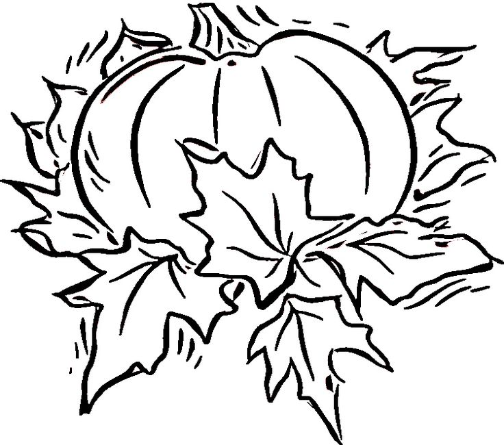 Free printable pumpkin coloring pages for kids coloring home pages
