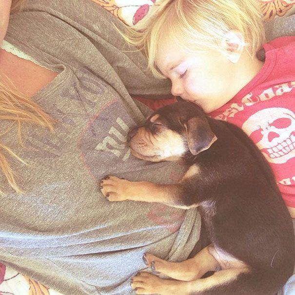 Best 25 Daily naps ideas on Pinterest