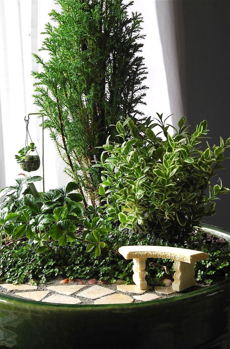 1070 best images about miniature fairy gardens on pinterest. Black Bedroom Furniture Sets. Home Design Ideas