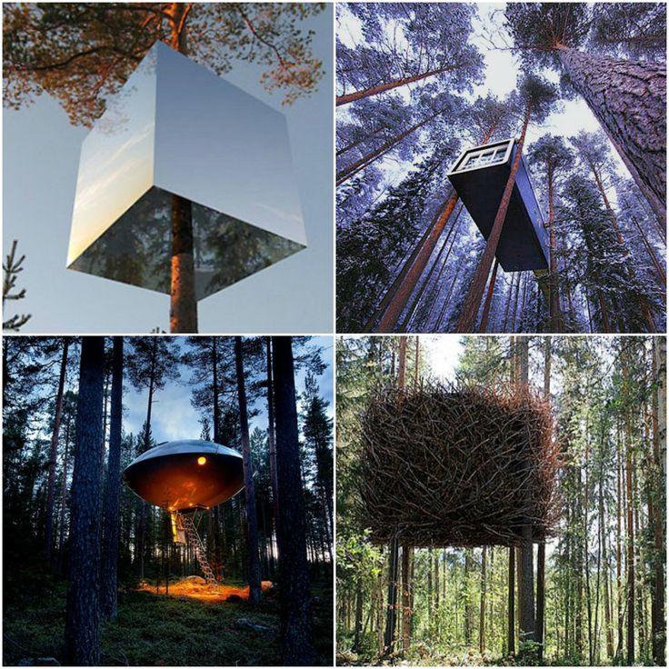 "#Treehotel in #SwedishLapland is one of ""48 epic dream hotels to visit before you die"""