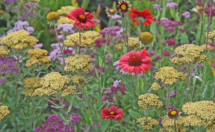 48 best home garten images on pinterest vegetable garden gardening and good ideas. Black Bedroom Furniture Sets. Home Design Ideas