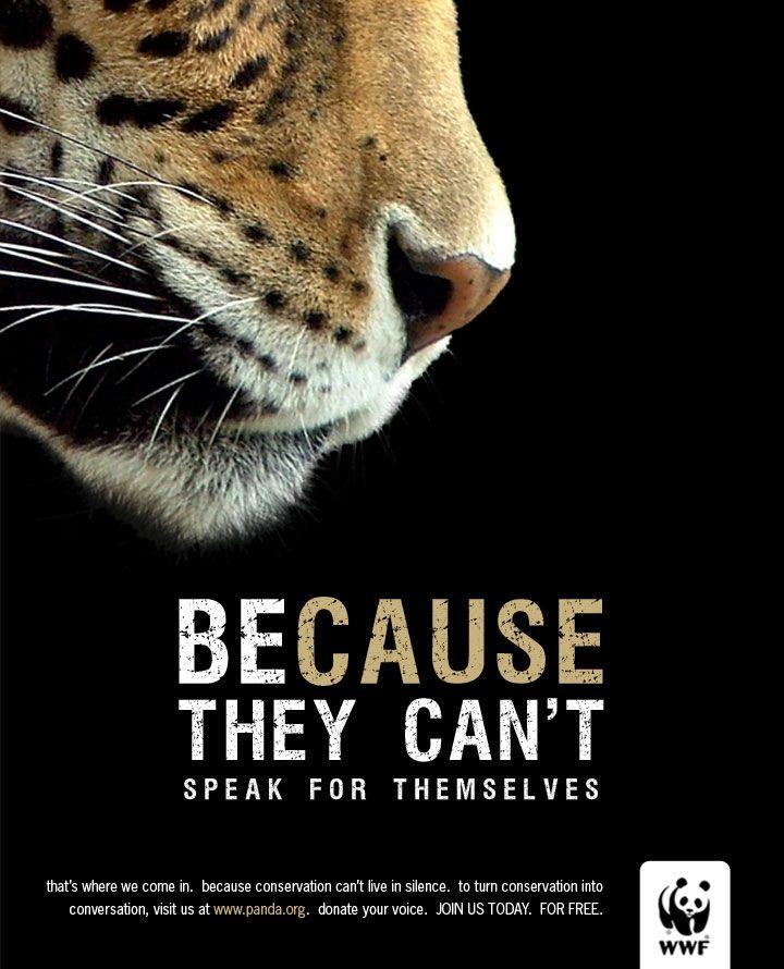 Super 12 best WWF ads / Pubs du WWF images on Pinterest | Wild animals  RB29