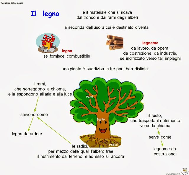 Paradiso delle mappe: Il legno