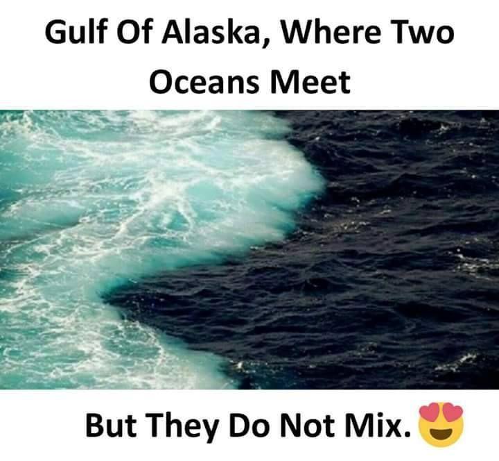 place in alaska where 2 oceans meet but do not mix races