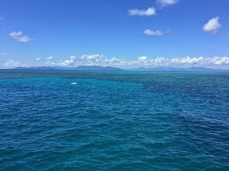 Realizando mais um desejo hoje que venho esperando durante todo o meu intercâmbio. A Grande Barreira de Corais pode ser vista do espaço e é a maior estrutura do mundo feita unicamente por organismos vivos. Uma das 7 maravilhas naturais do mundo segundo a CNN.  My dream its becoming true today I'm delighted too be in one of the New7Wonders of Nature #7wonders  #greatbarrierreef #reef #dream #imhere #ocean by guizidio http://ift.tt/1UokkV2